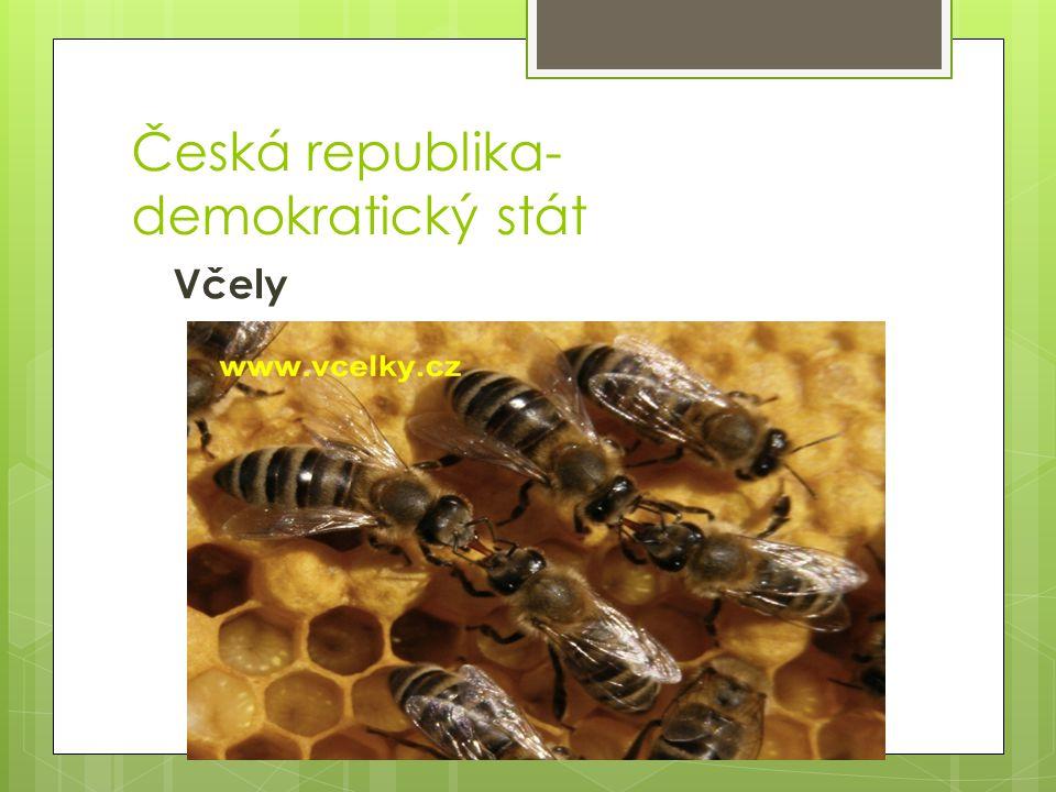 Česká republika- demokratický stát Včely