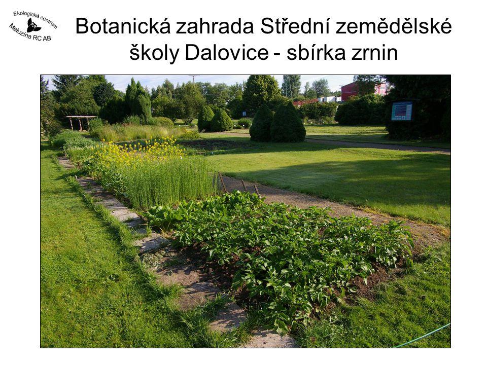 Botanická zahrada Střední zemědělské školy Dalovice - sbírka zrnin