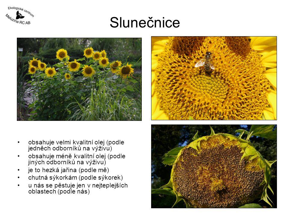 Slunečnice obsahuje velmi kvalitní olej (podle jedněch odborníků na výživu) obsahuje méně kvalitní olej (podle jiných odborníků na výživu) je to hezká
