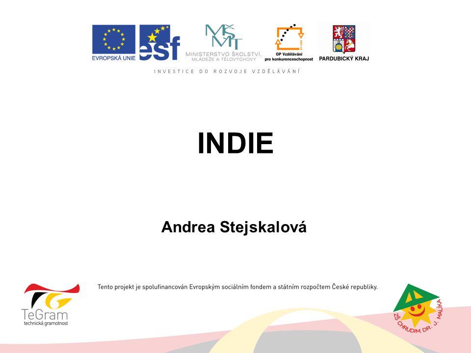 INDIE Andrea Stejskalová
