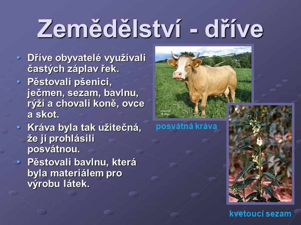 Zemědělství - dříve  Dříve obyvatelé využívali častých záplav řek.  Pěstovali pšenici, ječmen, sezam, bavlnu, rýži a chovali koně, ovce a skot.  Kr