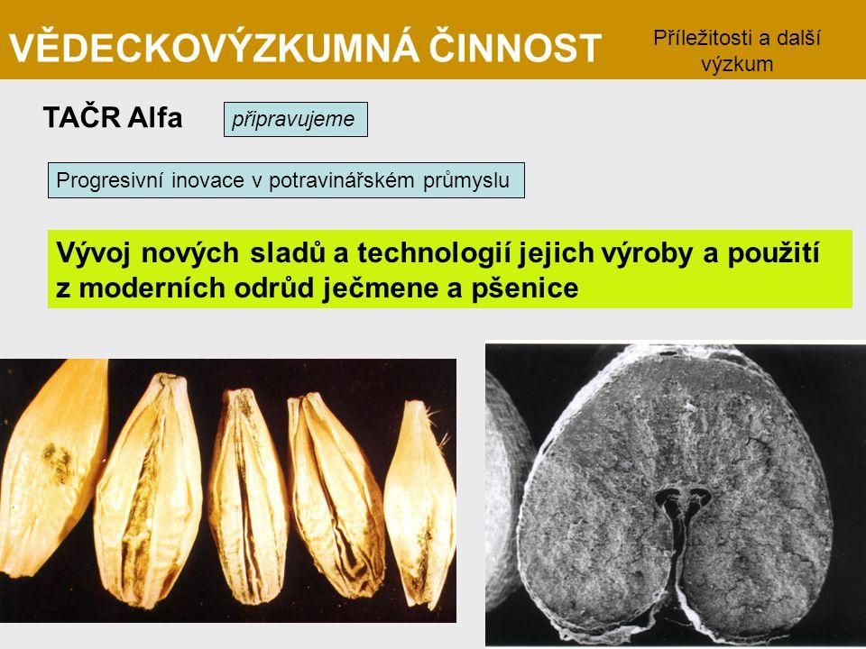 VĚDECKOVÝZKUMNÁ ČINNOST TAČR Alfa připravujeme Vývoj nových sladů a technologií jejich výroby a použití z moderních odrůd ječmene a pšenice Příležitos