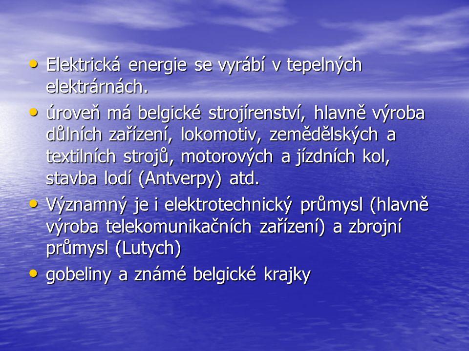 Elektrická energie se vyrábí v tepelných elektrárnách. Elektrická energie se vyrábí v tepelných elektrárnách. úroveň má belgické strojírenství, hlavně