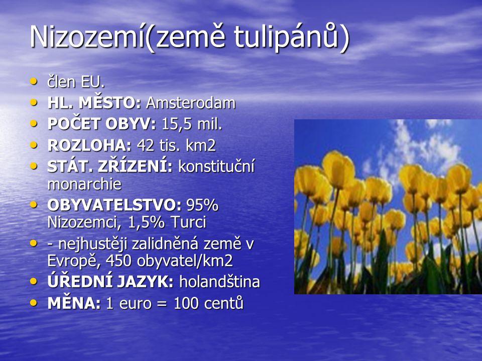 Nizozemí(země tulipánů) člen EU. člen EU. HL. MĚSTO: Amsterodam HL. MĚSTO: Amsterodam POČET OBYV: 15,5 mil. POČET OBYV: 15,5 mil. ROZLOHA: 42 tis. km2