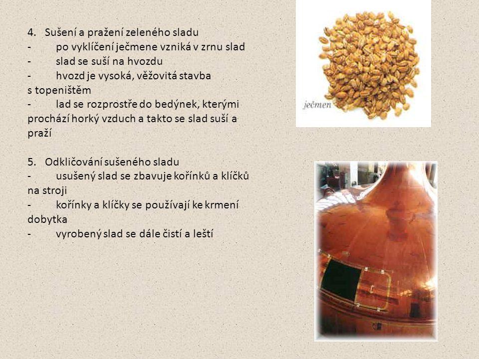 4. Sušení a pražení zeleného sladu - po vyklíčení ječmene vzniká v zrnu slad - slad se suší na hvozdu - hvozd je vysoká, věžovitá stavba s topeništěm