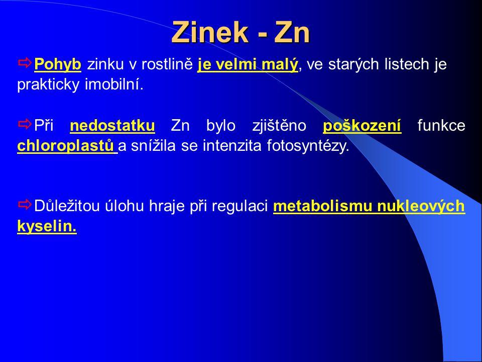 Zinek - Zn  Pohyb zinku v rostlině je velmi malý, ve starých listech je prakticky imobilní.  Při nedostatku Zn bylo zjištěno poškození funkce chloro