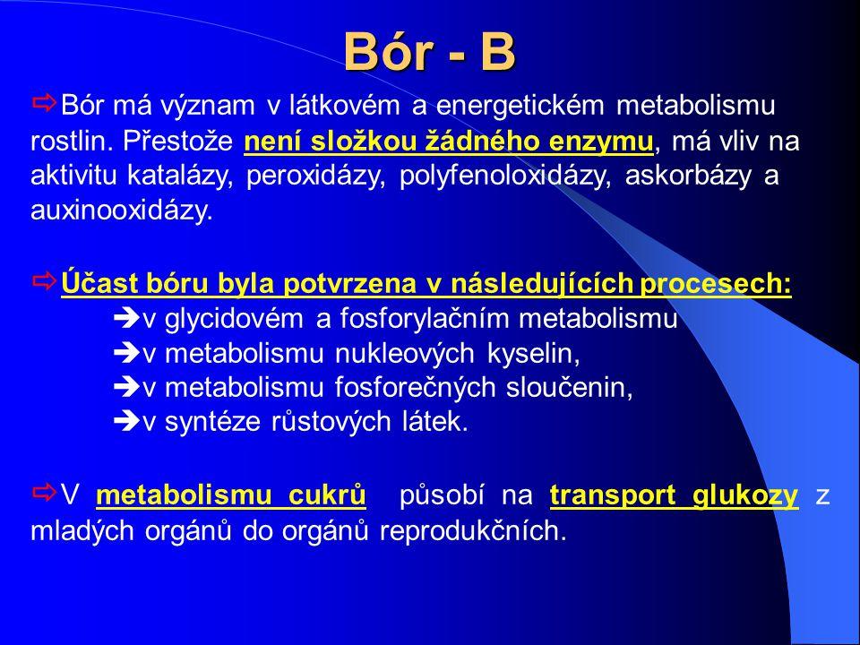 Bór - B  Bór má význam v látkovém a energetickém metabolismu rostlin. Přestože není složkou žádného enzymu, má vliv na aktivitu katalázy, peroxidázy,