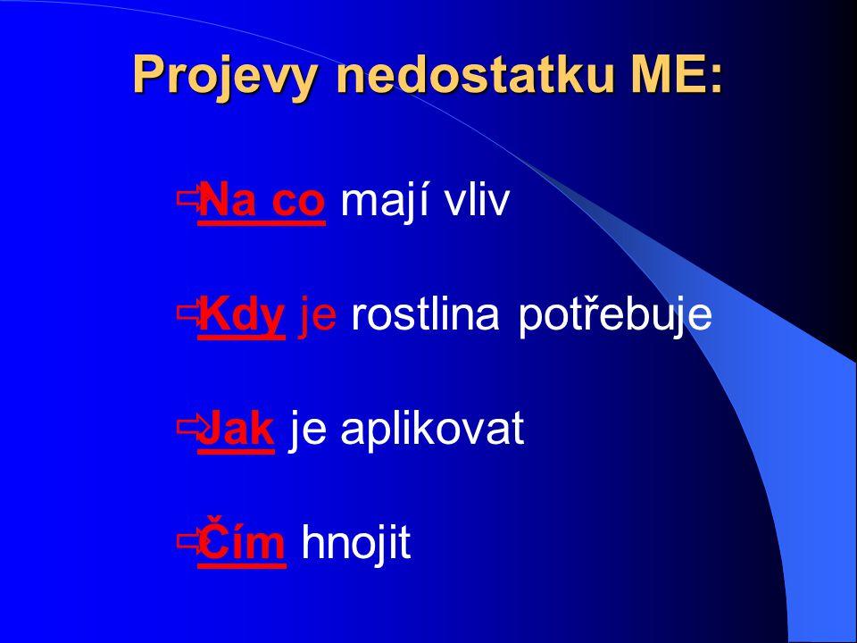 Schéma řezu epidermální části listu ( Ryant 2003)