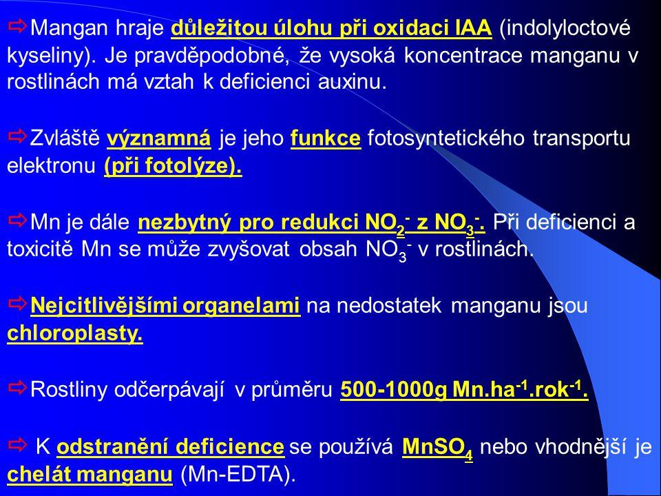  Mangan hraje důležitou úlohu při oxidaci IAA (indolyloctové kyseliny). Je pravděpodobné, že vysoká koncentrace manganu v rostlinách má vztah k defic