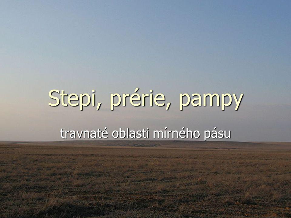 Stepi, prérie, pampy travnaté oblasti mírného pásu
