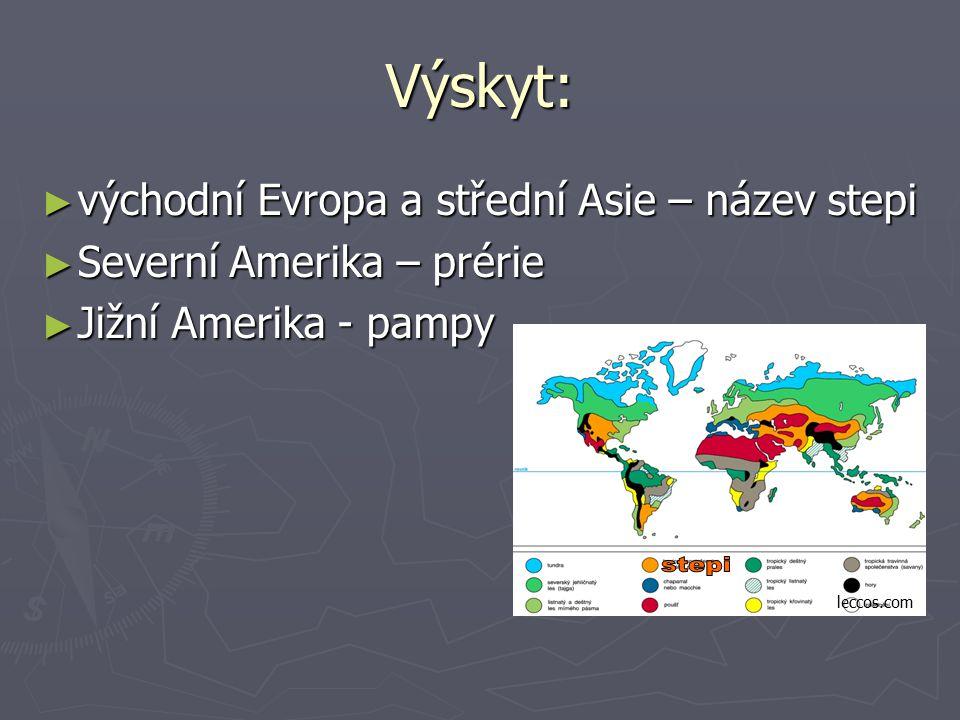 Výskyt: ► východní Evropa a střední Asie – název stepi ► Severní Amerika – prérie ► Jižní Amerika - pampy leccos.com