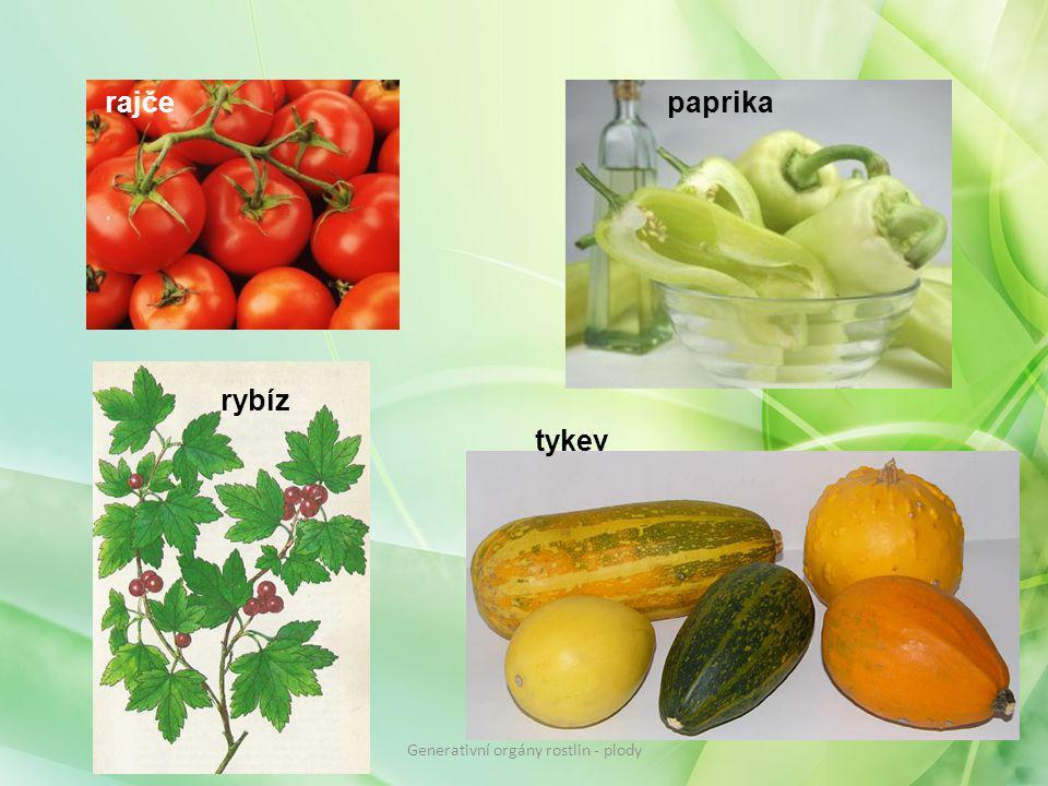 rajčepaprika tykev rybíz Generativní orgány rostlin - plody