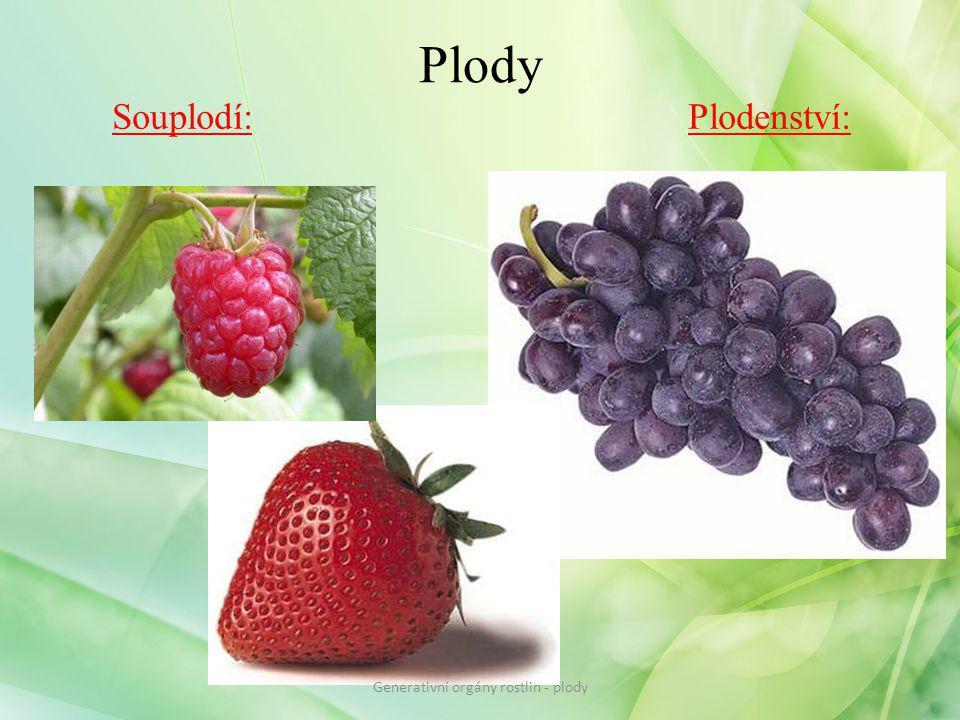Plody Souplodí:Plodenství: Generativní orgány rostlin - plody