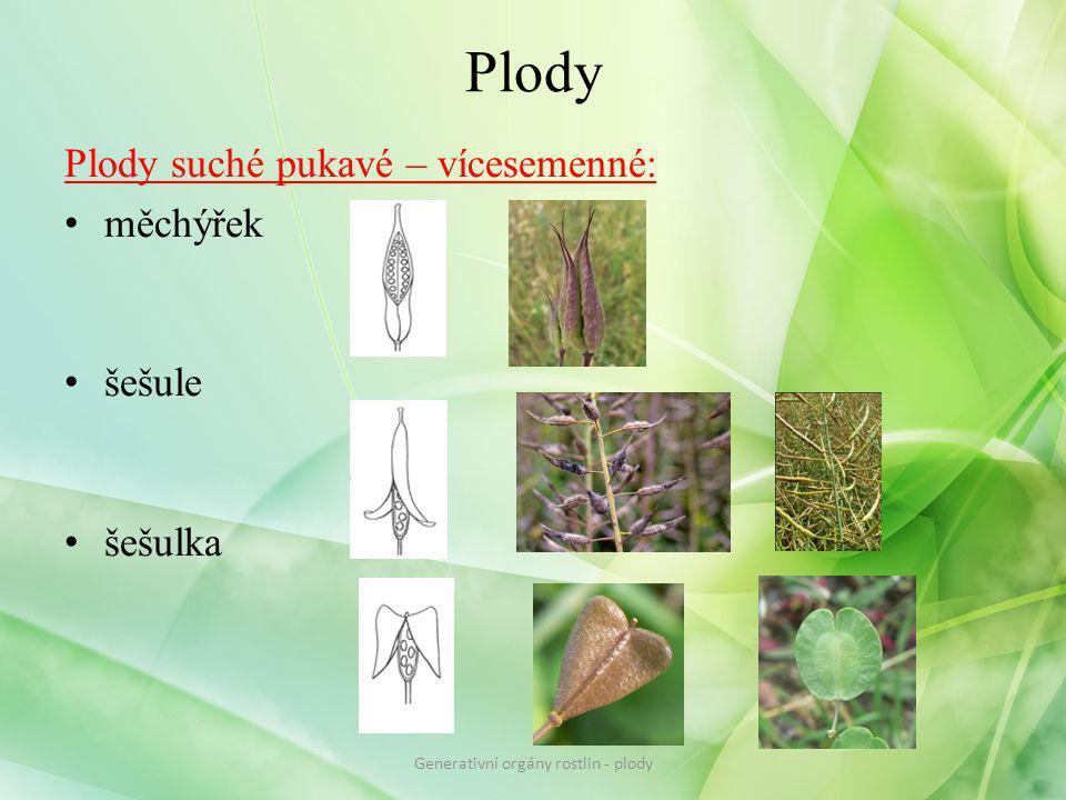 Plody Plody suché pukavé – vícesemenné: měchýřek šešule šešulka Generativní orgány rostlin - plody