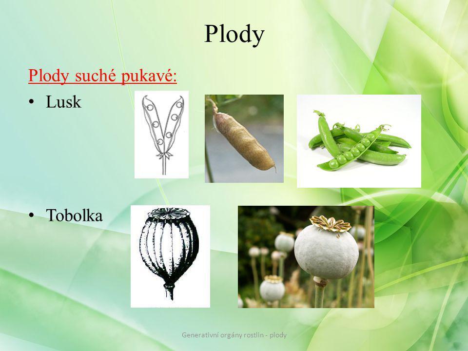 Plody Plody suché pukavé: Lusk Tobolka Generativní orgány rostlin - plody