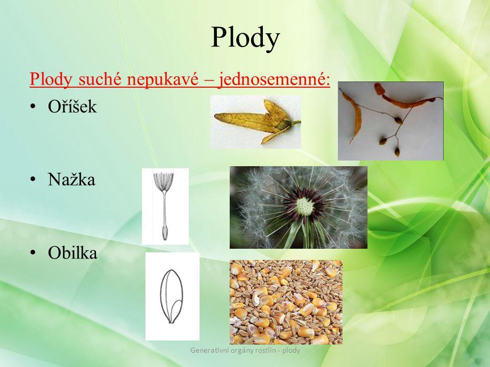 Plody Plody suché nepukavé – jednosemenné: Oříšek Nažka Obilka Generativní orgány rostlin - plody