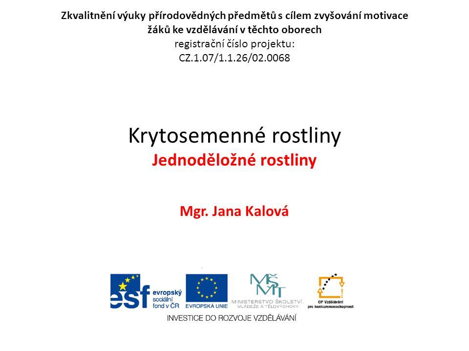 Krytosemenné rostliny Jednoděložné rostliny Mgr. Jana Kalová Zkvalitnění výuky přírodovědných předmětů s cílem zvyšování motivace žáků ke vzdělávání v