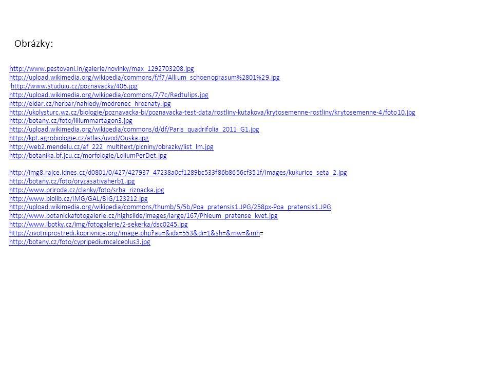 Obrázky: ht tp://www.pestovani.in/galerie/novinky/max_1292703208.jpg http://upload.wikimedia.org/wikipedia/commons/f/f7/Allium_schoenoprasum%2801%29.j