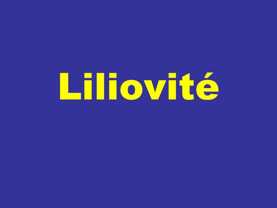 Liliovité