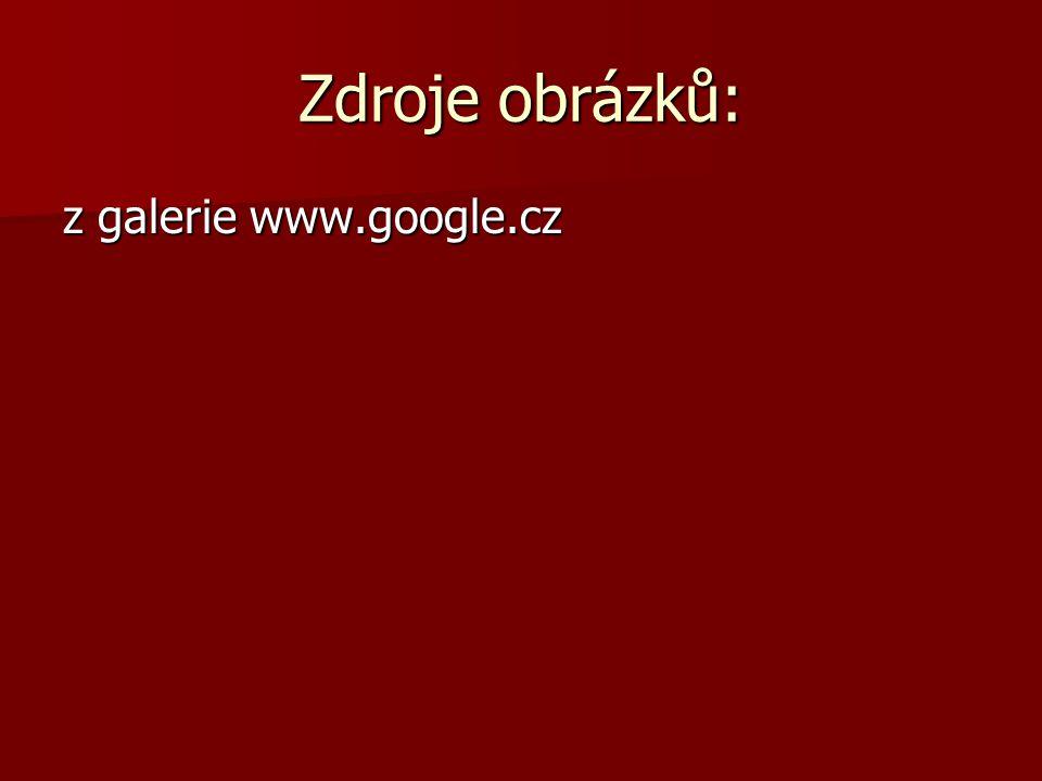 Zdroje obrázků: z galerie www.google.cz