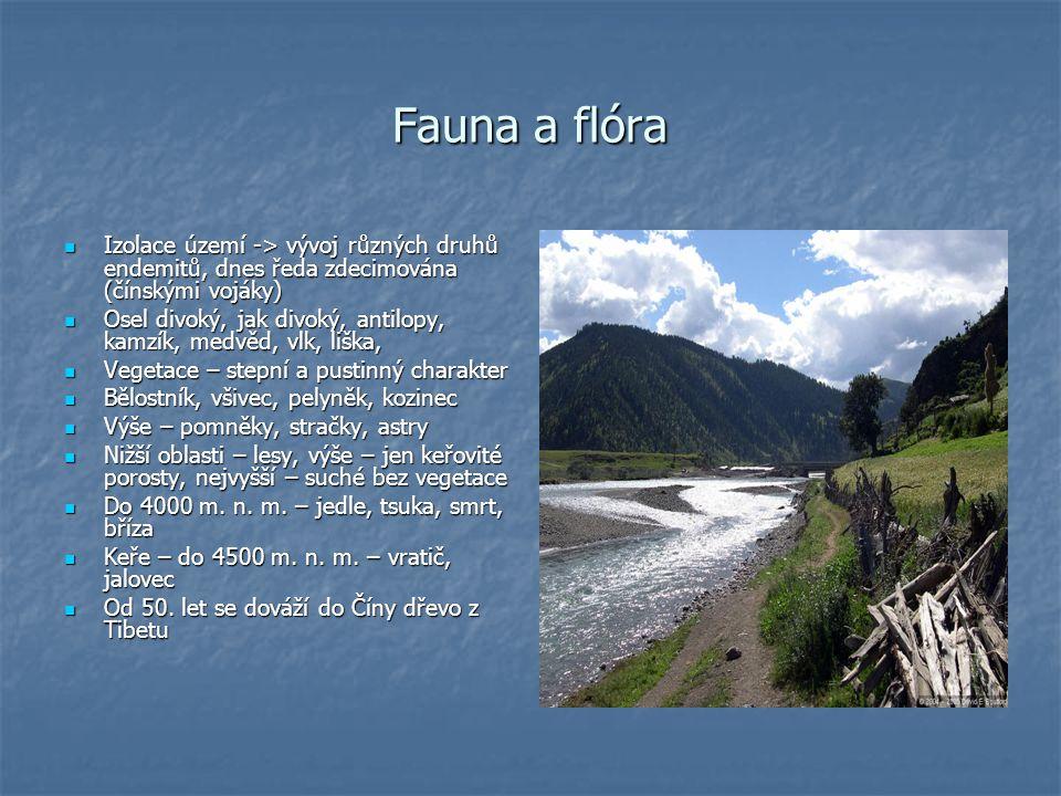 Fauna a flóra Izolace území -> vývoj různých druhů endemitů, dnes ředa zdecimována (čínskými vojáky) Izolace území -> vývoj různých druhů endemitů, dn