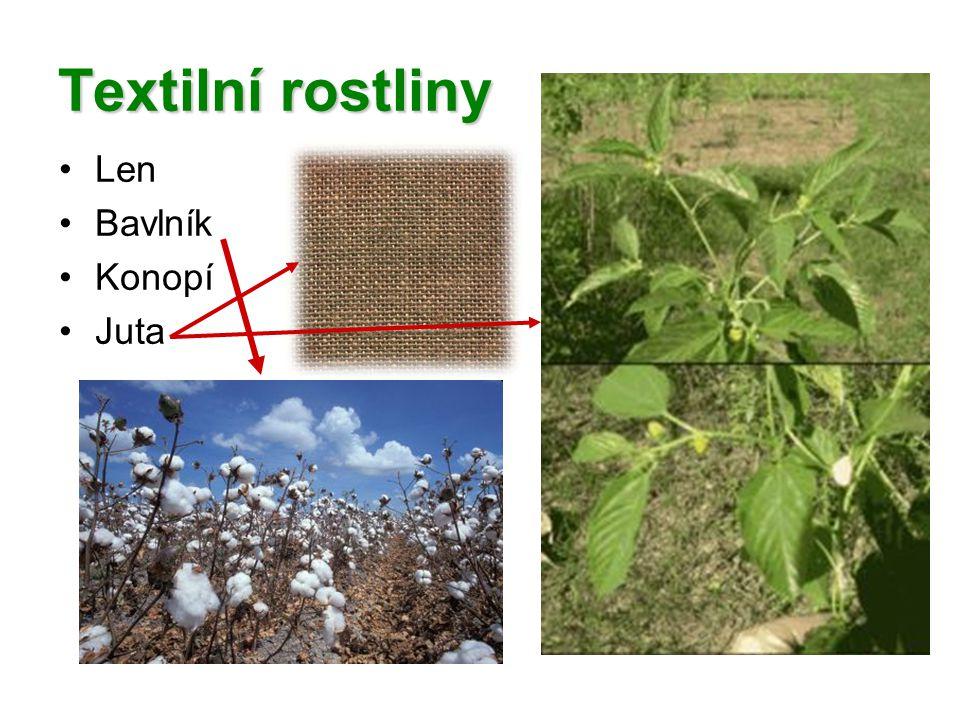 Textilní rostliny Len Bavlník Konopí Juta