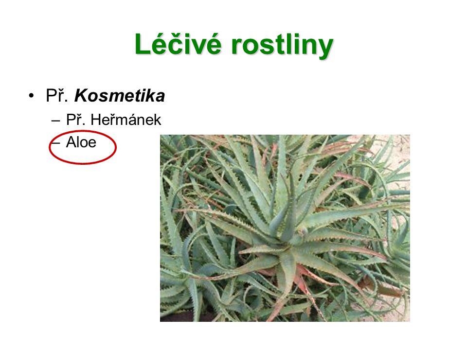 Léčivé rostliny Př. Kosmetika –Př. Heřmánek –Aloe