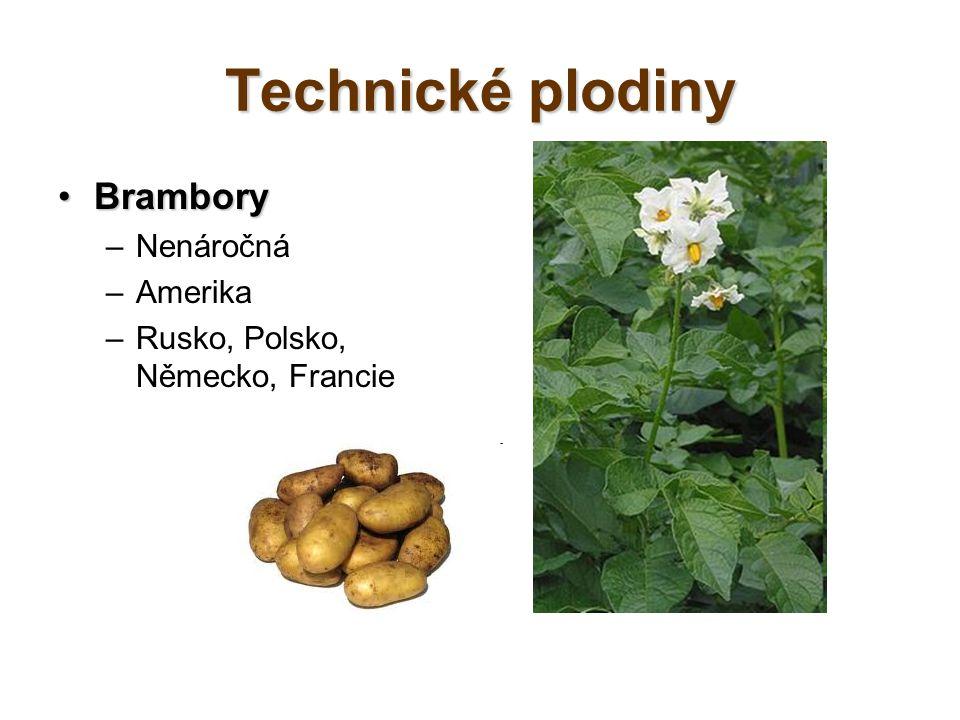 Technické plodiny BramboryBrambory –Nenáročná –Amerika –Rusko, Polsko, Německo, Francie