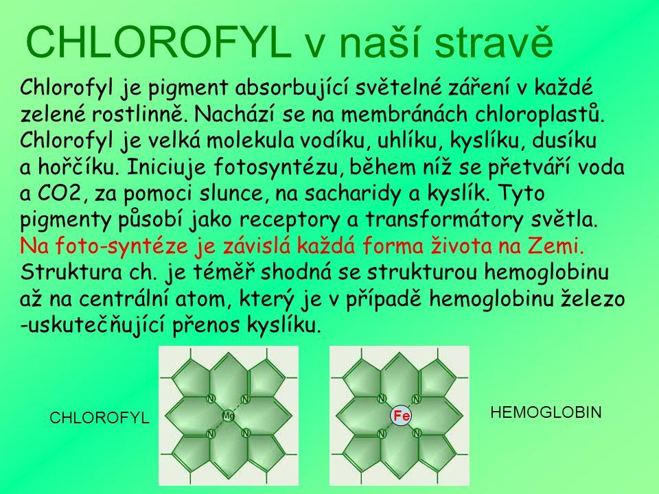 CHLOROFYL v naší stravě CHLOROFYL a FOTOSYNTÉZA HEMOGLOBIN - výzkumy Konzumace a účinky CHLORO- FYLU a HEMOGLOBINU Tip k využití CHLOROFYLU Nejstarší