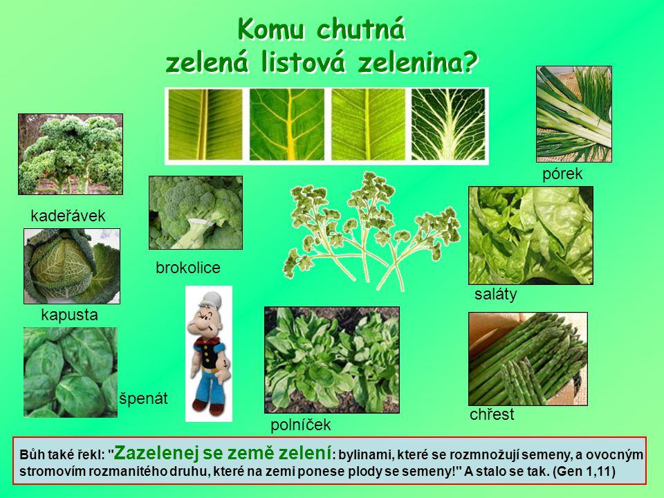 A v kterých rostlinách? VE VŠECH. V ovoci, zelenině, ve fazolích, semenách, ořeších, fazolích i v některých bylinkách. Obsahují jich doslova TISÍCE. T