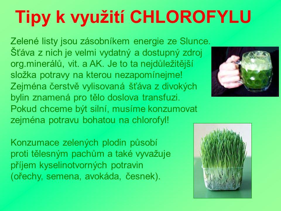 o.s. Život a zdraví - pobočka Opava 18.9.2007 CHLOROFYL v naší stravě Zdroje CHLOROFYLU Mezi běžné zdroje patří zejména zelenolistá zelenina: špenát,