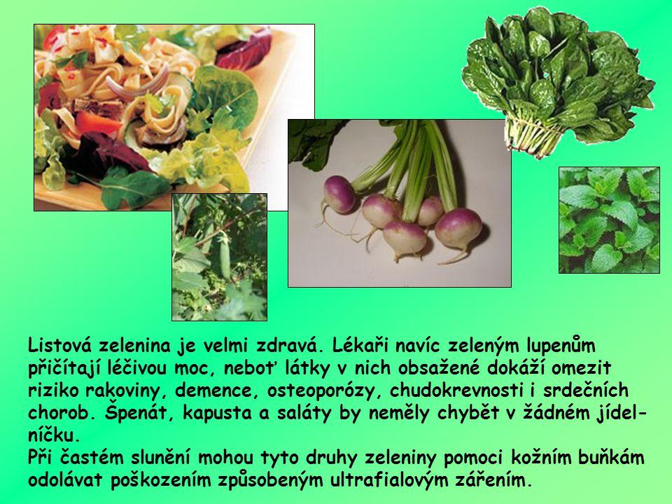 Komu chutná zelená listová zelenina? polníček špenát chřest saláty pórek kadeřávek brokolice kapusta Bůh také řekl:
