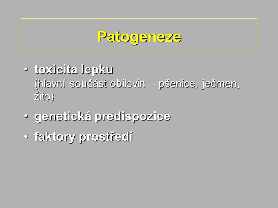 Patogeneze toxicita lepku (hlavní součást obilovin – pšenice, ječmen, žito)toxicita lepku (hlavní součást obilovin – pšenice, ječmen, žito) genetická predispozicegenetická predispozice faktory prostředífaktory prostředí