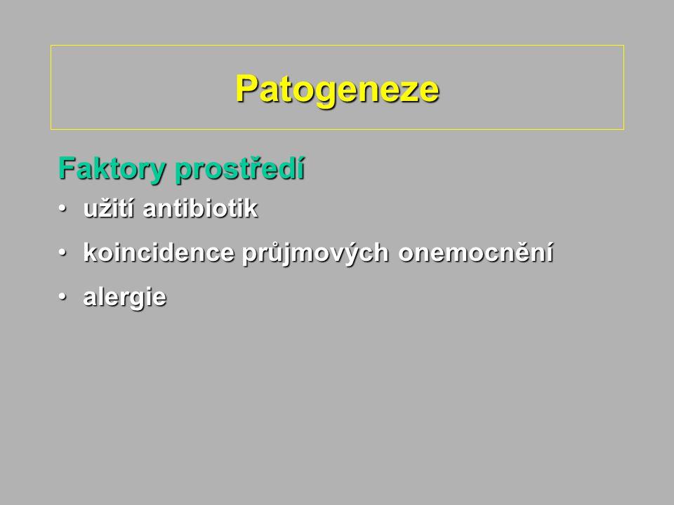 Patogeneze Faktory prostředí užití antibiotikužití antibiotik koincidence průjmových onemocněníkoincidence průjmových onemocnění alergiealergie