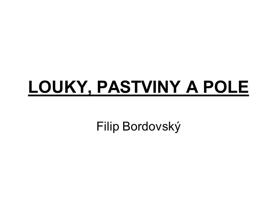 LOUKY, PASTVINY A POLE Filip Bordovský