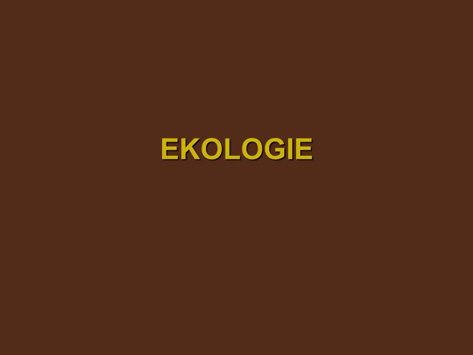 ekologie Ernst Haeckel (19.