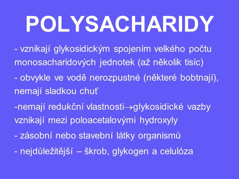 POLYSACHARIDY - vznikají glykosidickým spojením velkého počtu monosacharidových jednotek (až několik tisíc) - obvykle ve vodě nerozpustné (některé bob