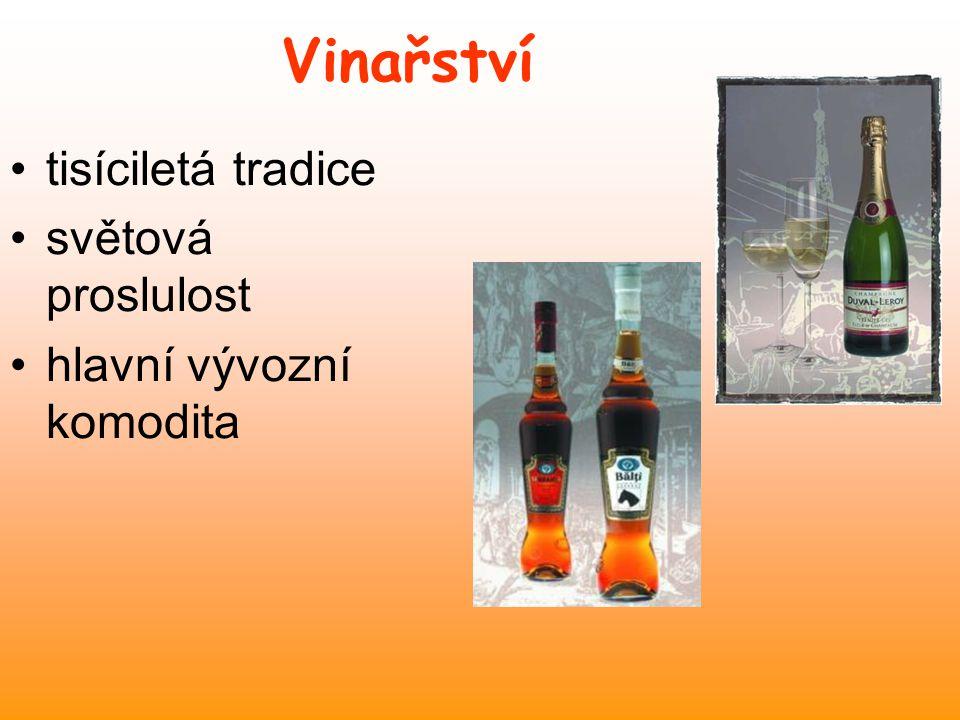 Vinařství tisíciletá tradice světová proslulost hlavní vývozní komodita