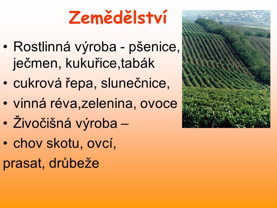 Zemědělství Rostlinná výroba - pšenice, ječmen, kukuřice,tabák cukrová řepa, slunečnice, vinná réva,zelenina, ovoce Živočišná výroba – chov skotu, ovcí, prasat, drůbeže