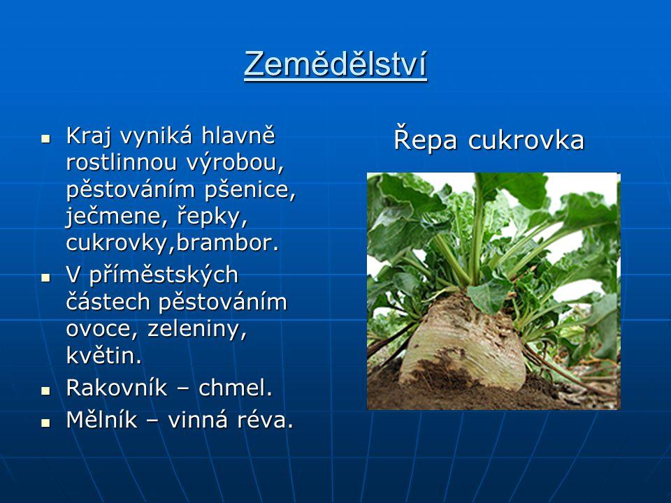 Zemědělství Kraj vyniká hlavně rostlinnou výrobou, pěstováním pšenice, ječmene, řepky, cukrovky,brambor. Kraj vyniká hlavně rostlinnou výrobou, pěstov