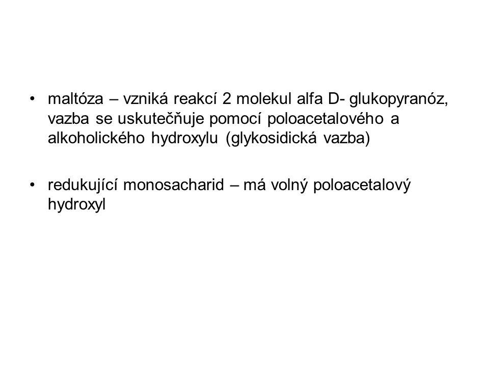 maltóza – vzniká reakcí 2 molekul alfa D- glukopyranóz, vazba se uskutečňuje pomocí poloacetalového a alkoholického hydroxylu (glykosidická vazba) redukující monosacharid – má volný poloacetalový hydroxyl