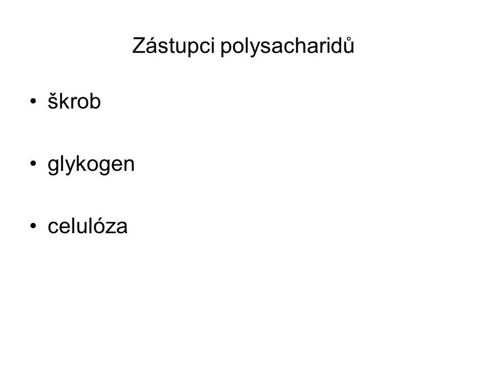 Zástupci polysacharidů škrob glykogen celulóza