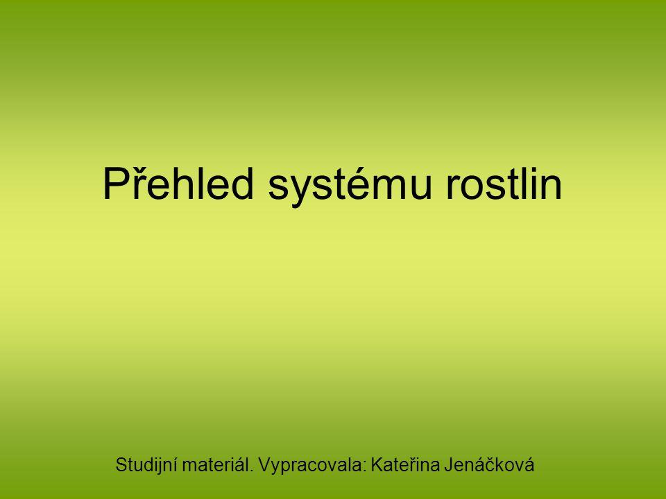 Přehled systému rostlin Studijní materiál. Vypracovala: Kateřina Jenáčková