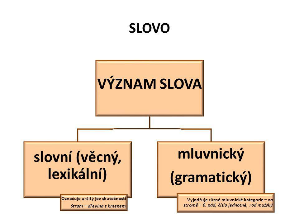 SLOVO VÝZNAM SLOVA slovní (věcný, lexikální) Označuje určitý jev skutečnosti Strom – dřevina s kmenem mluvnický (gramatický) Vyjadřuje různé mluvnické kategorie – na stromě – 6.