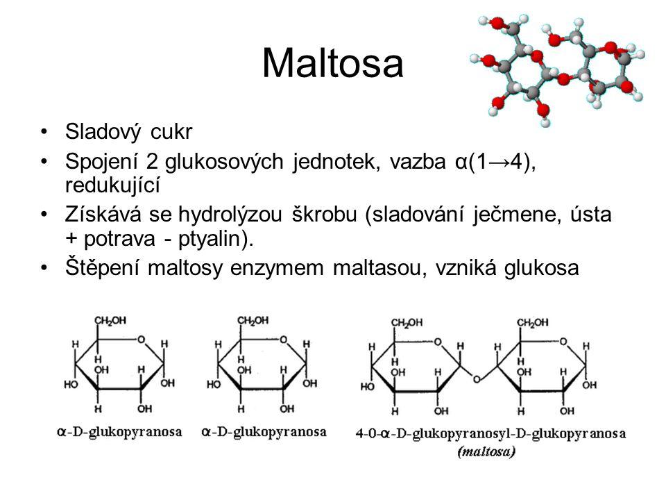 Laktosa Mléčný cukr Glukosa + galaktosa, vazba β (1→4), (α – D – glukopyranosa a β – D – galaktopyranosa) V mléce savců 4 až 7 % (kravské 4,8%, lidské 6%), mléko vydatný zdroj energie Pravotočivá, redukuje Fehlingovo činidlo Laktasa u některých dospělých chybí – laktosa nestravitelná