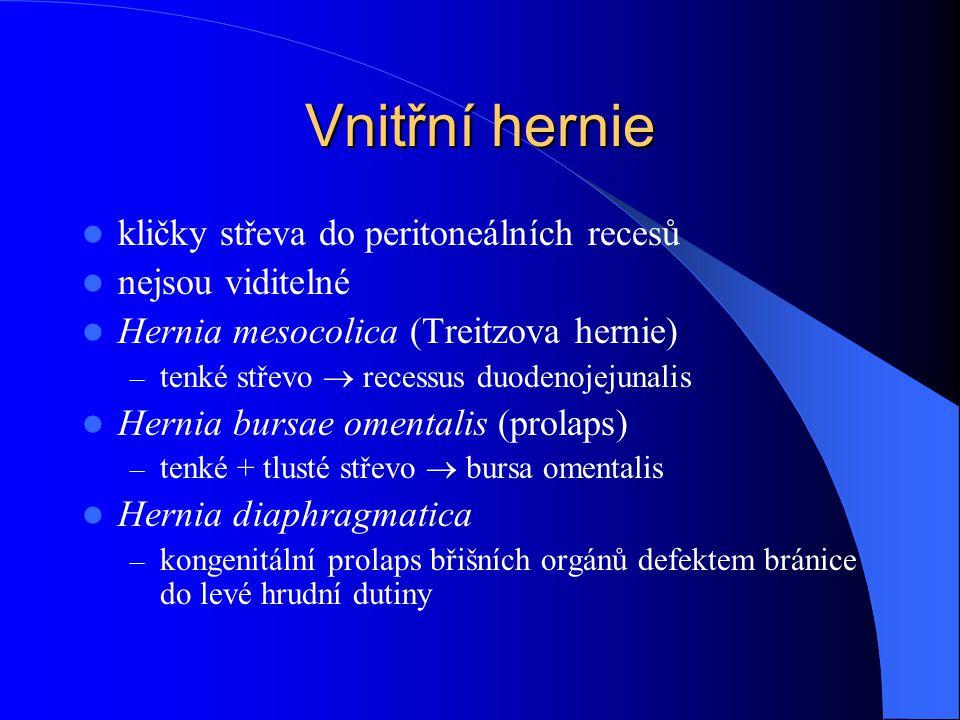Vnitřní hernie kličky střeva do peritoneálních recesů nejsou viditelné Hernia mesocolica (Treitzova hernie) – tenké střevo  recessus duodenojejunalis Hernia bursae omentalis (prolaps) – tenké + tlusté střevo  bursa omentalis Hernia diaphragmatica – kongenitální prolaps břišních orgánů defektem bránice do levé hrudní dutiny