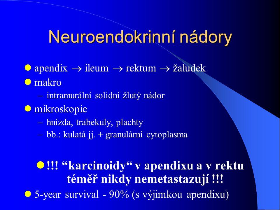 Neuroendokrinní nádory apendix  ileum  rektum  žaludek makro –intramurální solidní žlutý nádor mikroskopie –hnízda, trabekuly, plachty –bb.: kulatá jj.