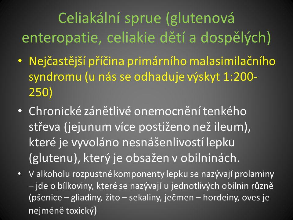 Celiakální sprue (glutenová enteropatie, celiakie dětí a dospělých) Nejčastější příčina primárního malasimilačního syndromu (u nás se odhaduje výskyt
