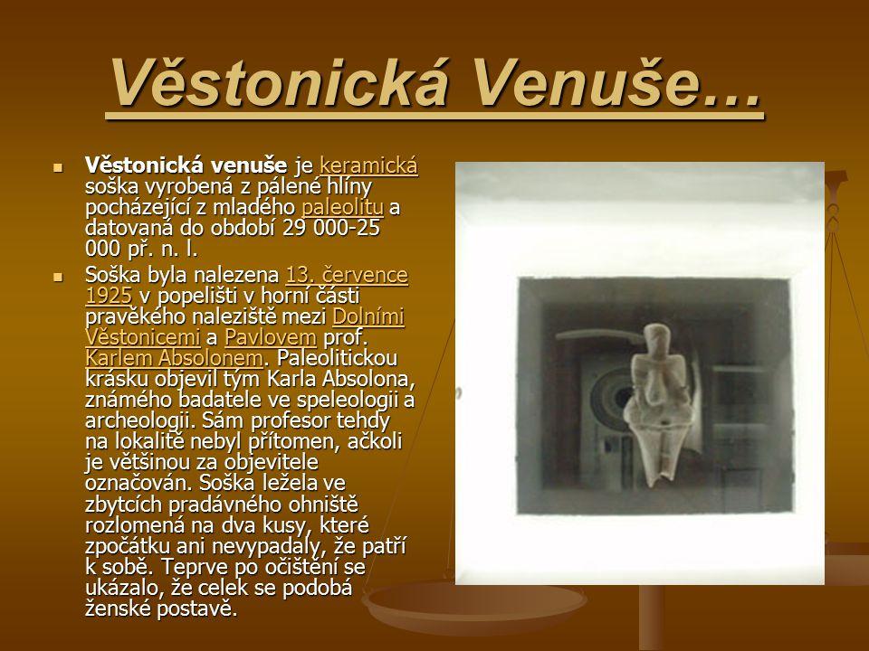 Věstonická Venuše… Věstonická venuše je keramická soška vyrobená z pálené hlíny pocházející z mladého paleolitu a datovaná do období 29 000-25 000 př.