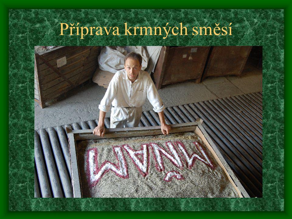 Příprava krmných směsí
